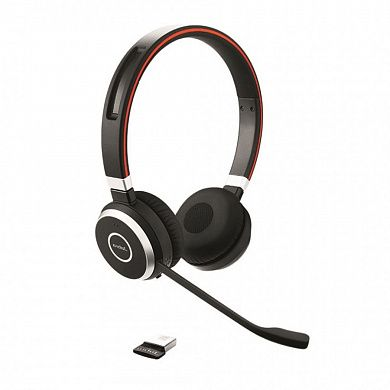 Jabra Evolve 65 MS Stereo  [USB-MS]